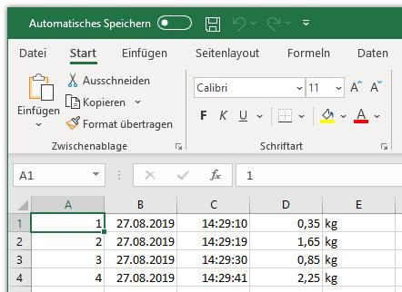 TXT-Datei in Excel nach Verwendung des Assistenten